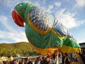 DayTime Air Balloon Compi_1